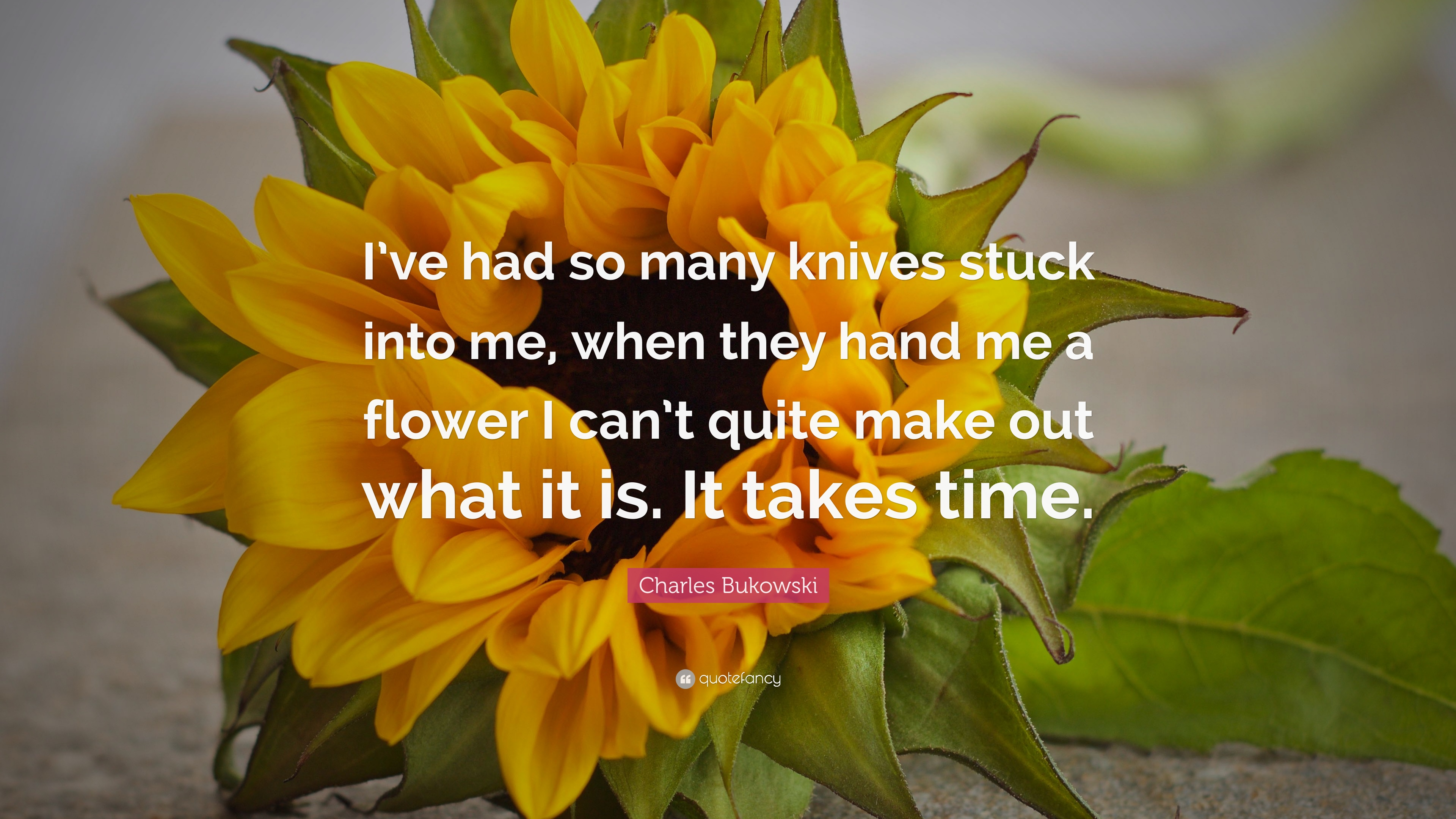 I've had so many knives stuck into me, when they hand me a flower I can' t quite make out what it is. It takes time.'