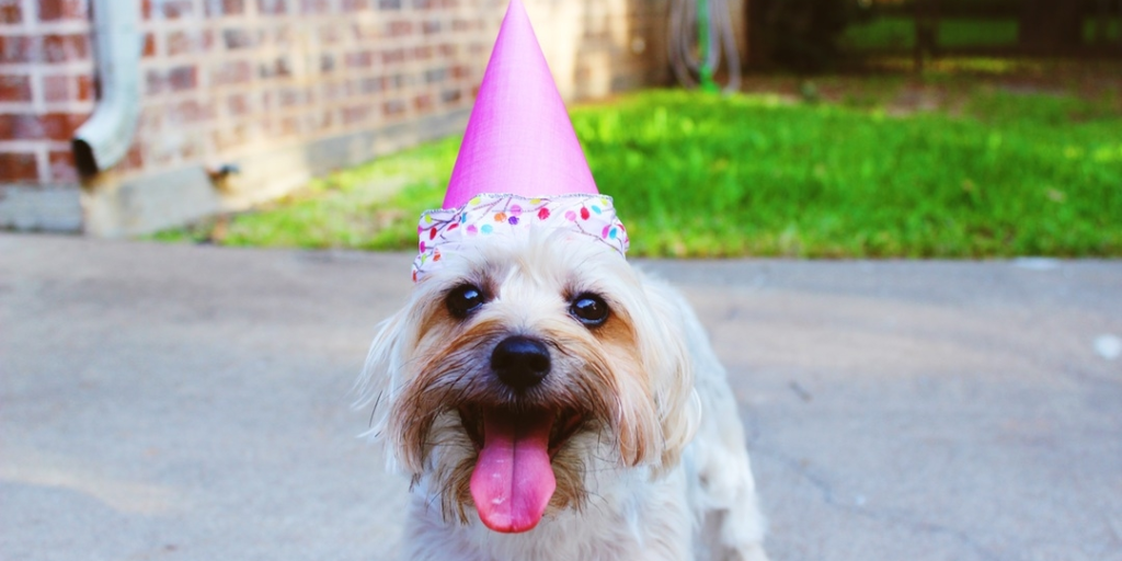 An Open Letter To My Best Friend On Your Birthday Open Letter