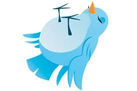 Open Letter to Twitter - Dead Bird